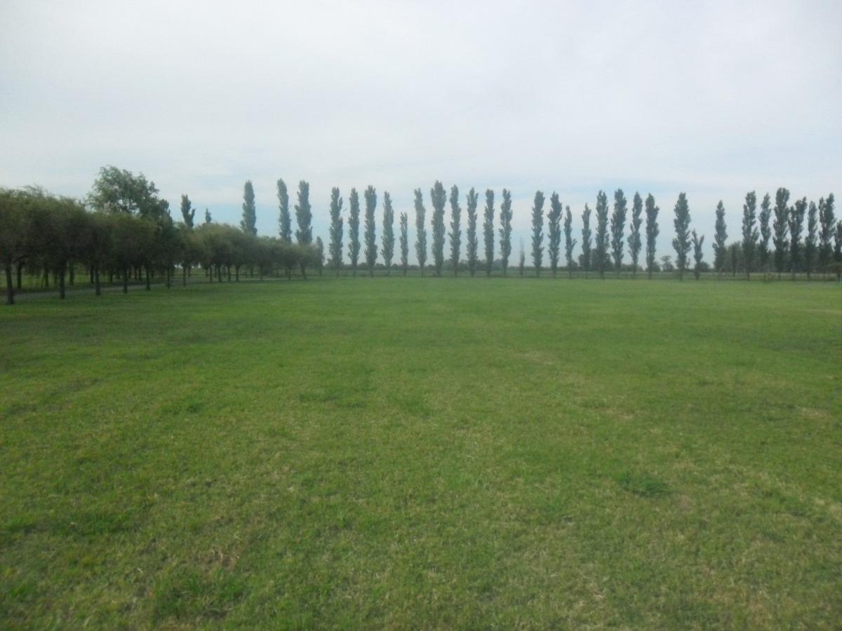 terreno en haras de funes