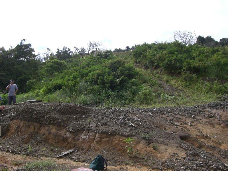 terreno en jerico de desamparados, 1.3 hectareas