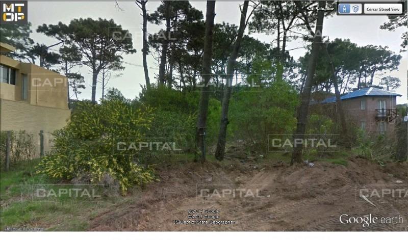 terreno en la barra, montoya   capital real estate ref:26336- ref: 26336