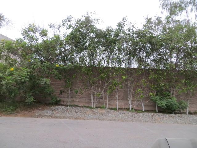 terreno en la molina vieja, educacion o residencial