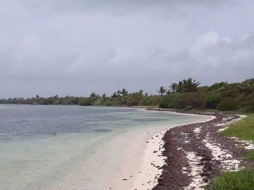 ?terreno en la playa de oportunidad?