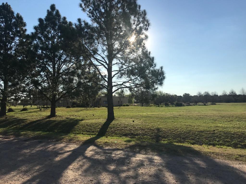 terreno en la primavera golf
