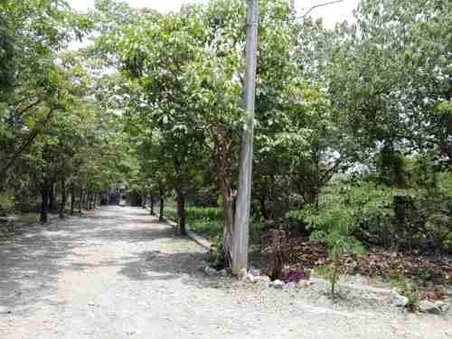 terreno  en lomas de jiutepec / jiutepec - ber-572-tu