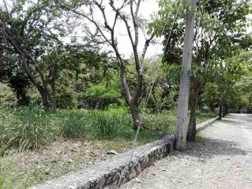 terreno  en lomas de jiutepec / jiutepec - grb-572-tu