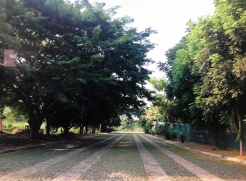 terreno en manzanillo
