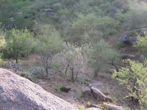 terreno en  mirador del lago, bialet massé (ref 4806)