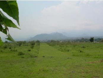 terreno en oaxtepec morelos