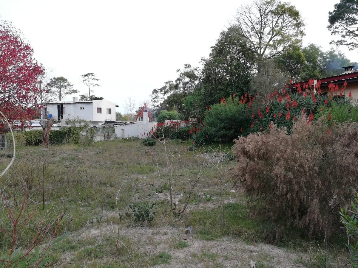 terreno en piriápolis barrio country (ref. 2656)
