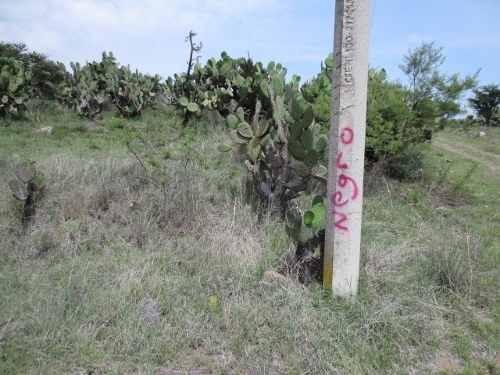 terreno en praderas del potreo, hidalgo