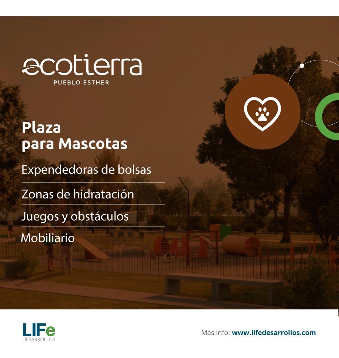 terreno en pueblo esther lote de 300 m2 financiado ecotierra