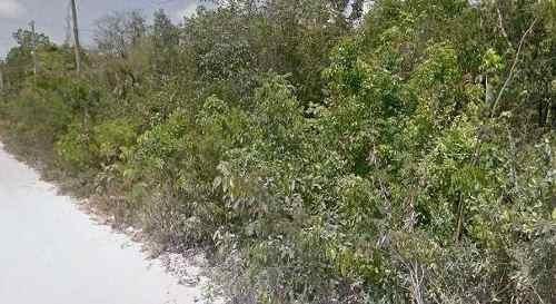 terreno en puerto morelos
