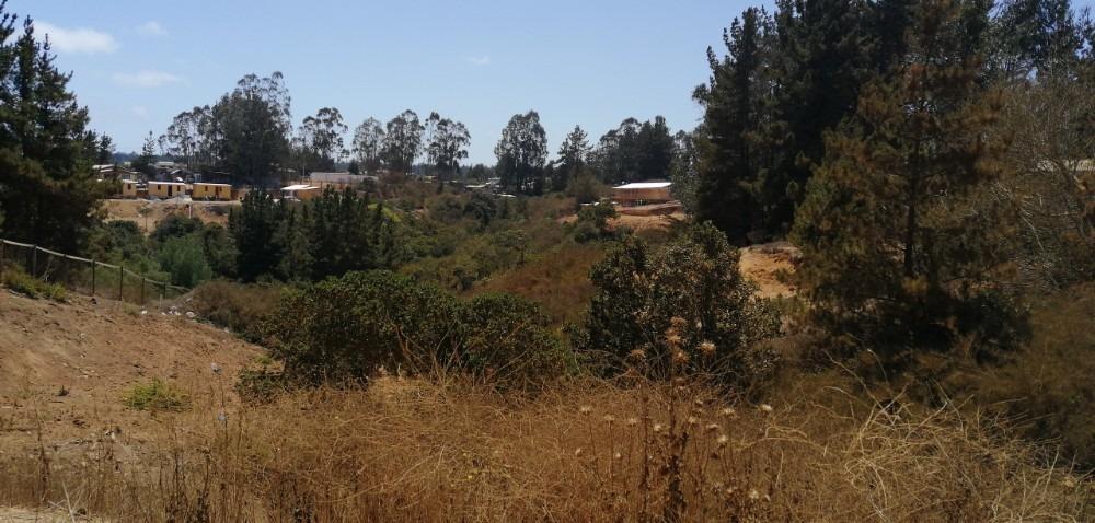 terreno en recinto hijuelas el tabo (el pinar & el roble)