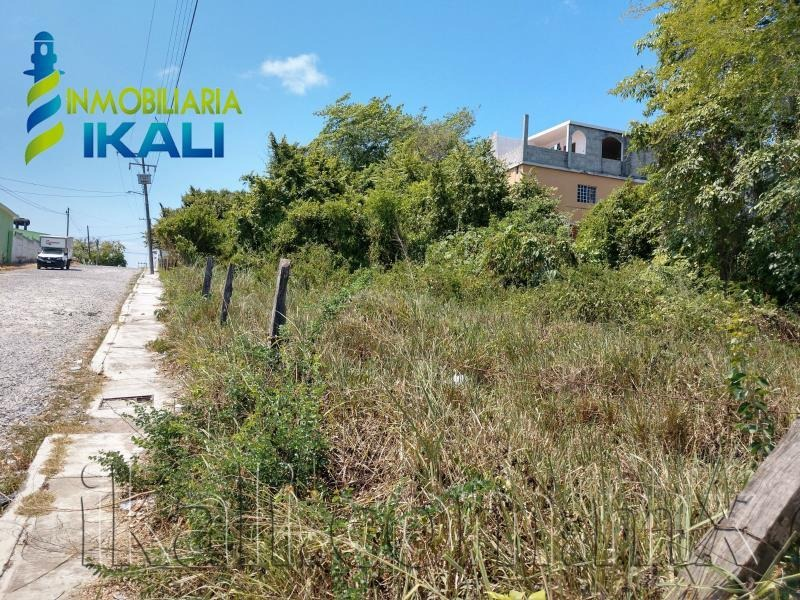 terreno en renta anahuac