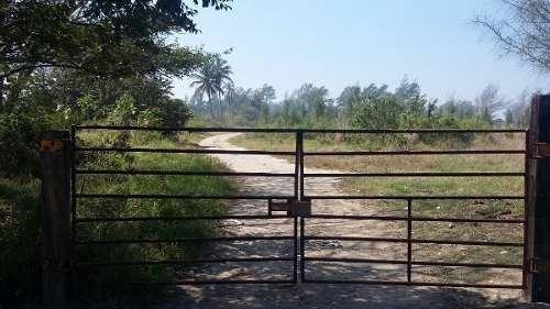 terreno en renta cerca de refinería madero.