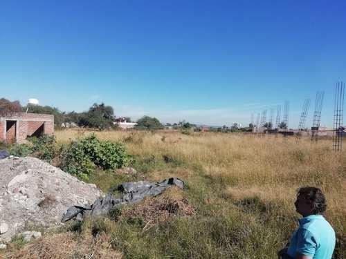 terreno en renta en el zapote