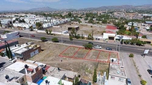 terreno en renta en garza sada (comercial) desde 280 m2 hasta 717 m2.