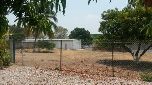 terreno en renta en los manguitos