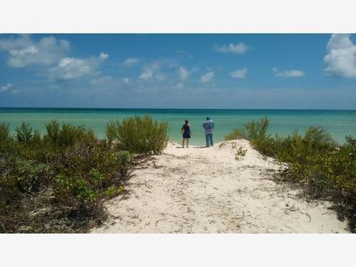 terreno en renta en sisal yucatan