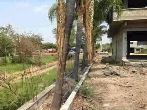 terreno en renta jojutla morelos