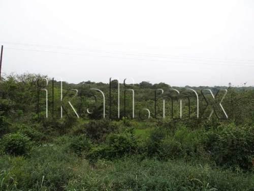 terreno en renta salida a tamiahua