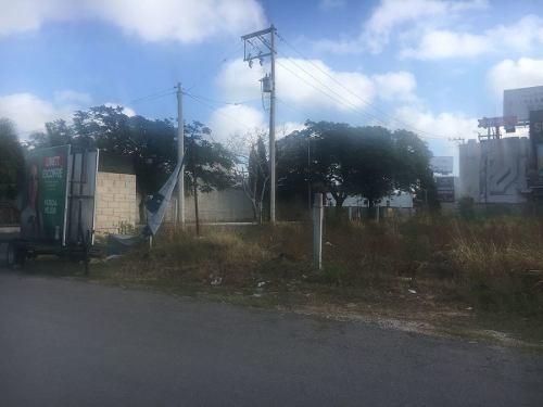 terreno en renta sobre calle 32 av. garcia lavin