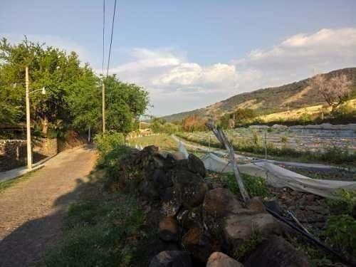 terreno en ribera de lago chapala colinda carretera nacional