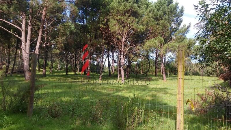 terreno en rincón del indio 2 hectáreas- ref: 35708