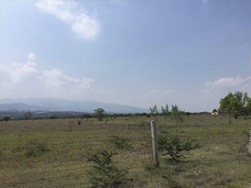 terreno en salida a dolores-hidalgo, terreno de 1 hectarea s