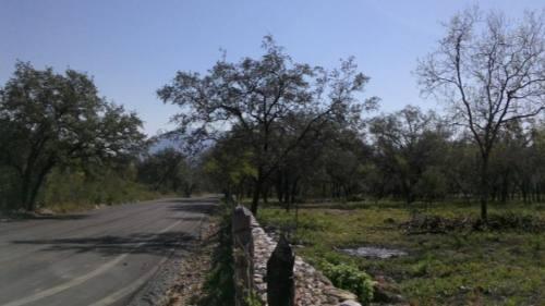 terreno en  san francisco (nuevo santiago) l#2