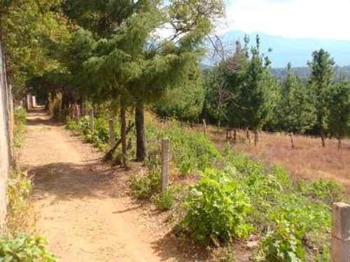 terreno en san gabriel ixtla, valle de bravo