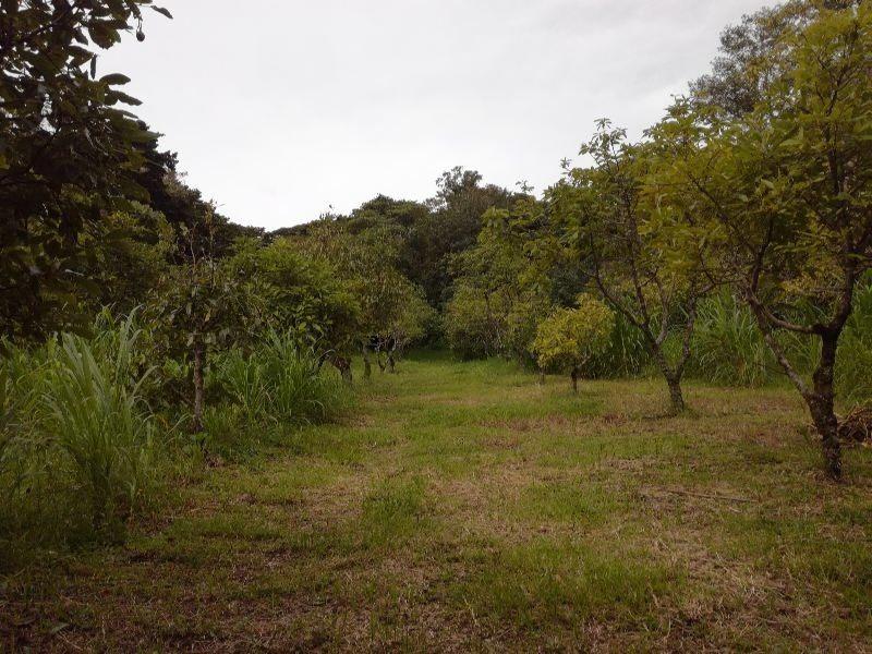 terreno en san rafael de heredia, 2 hectareas