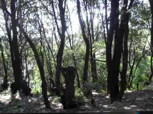 terreno en santa ana jilotzingo, los manantiales