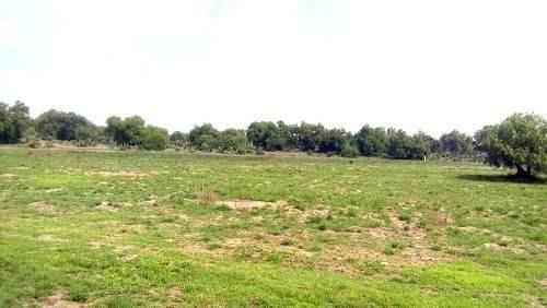 terreno en santa catarina, acolman estado de méxico  terreno