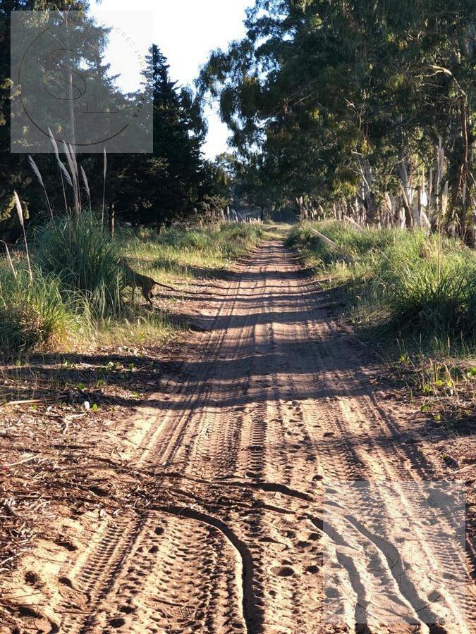 terreno en senderos 3 de costa esmeralda en venta