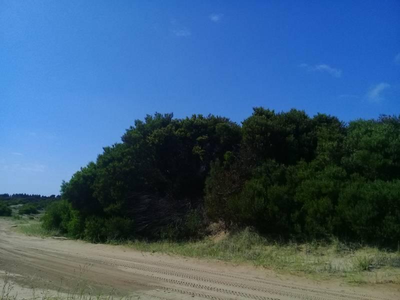 terreno en senderos i de costa esmeralda