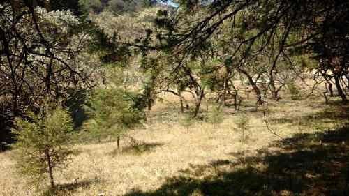terreno en sierra de alvarez