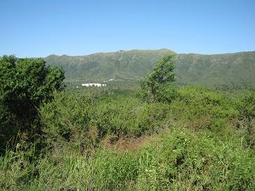 terreno en suncho huaico, bialet massé  (ref 2804)