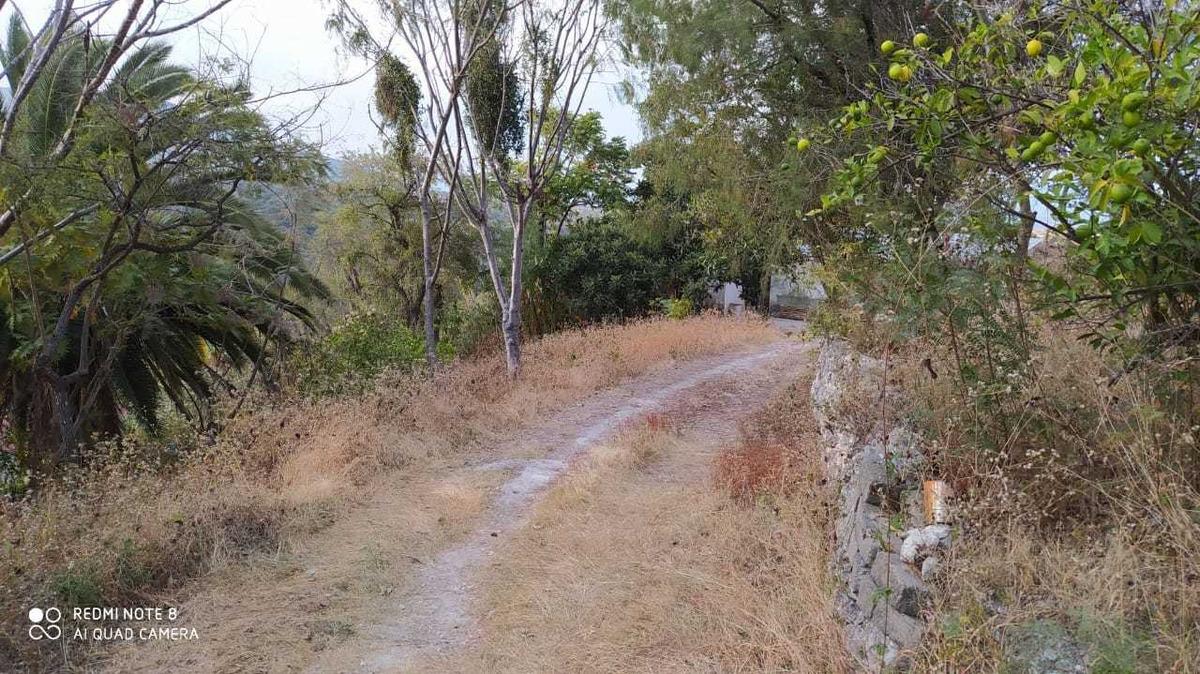 terreno en tamazulapan oaxaca aprox 900 m2  a tratar