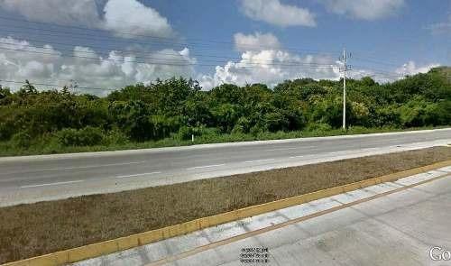 terreno en tankah tulum 422 hectareas