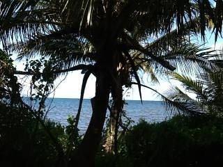 terreno en tanquila mahahual