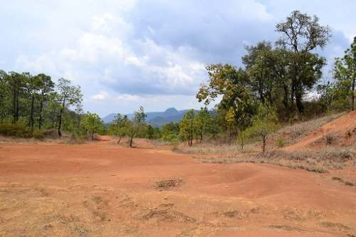 terreno en temascaltepec