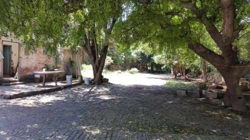 terreno  en tetela del monte / cuernavaca - iti-1086-tuc