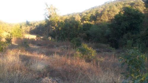 terreno en tiloxtoc