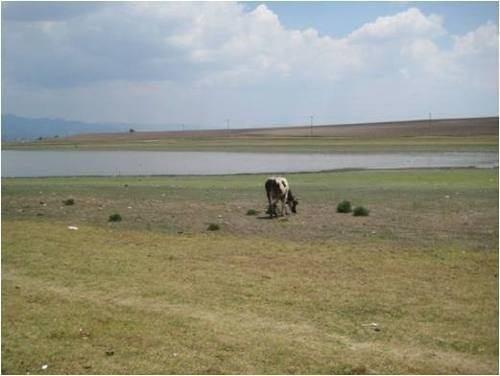 terreno en tlachaloya, independencia