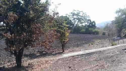 terreno en tlaltizapán morelos