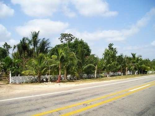 terreno en venta 1 hectarea autop. mérida-chichen itza. a 700m de av. huayacan. cancún