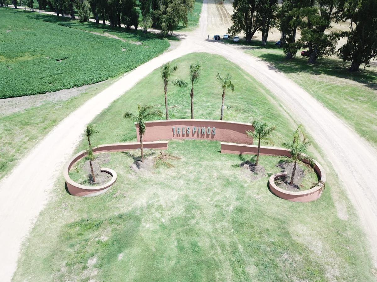 terreno en venta 1000m2  - los tres pinos villa de campo