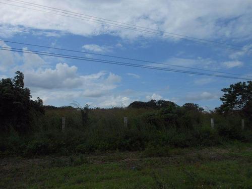 terreno en venta 2 hectáreas a orilla de carretera alvarado