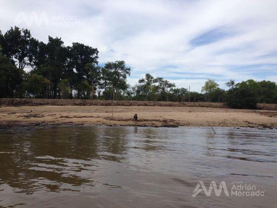terreno en venta 40 hectáreas - parana de las palmas s. fernando