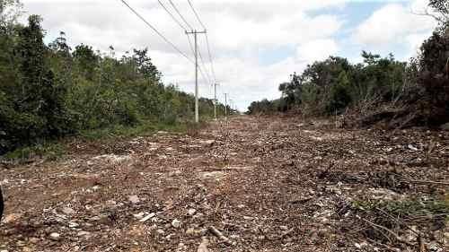 terreno en venta 500 m2, alamos ii, zona cumbres, cancún